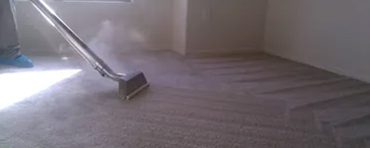 Carpet Steam Cleaning Service (2)